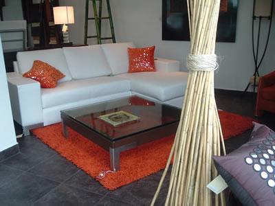 Como limpiar alfombras de pelo largo en casa fabricantes - Limpiar alfombra pelo largo ...